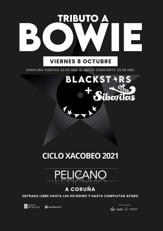 BLACKSTARS tributo Bowie